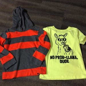 Other - Size 5T llama tee and hooded tee bundle